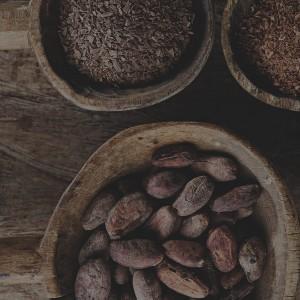 10choses à savoir sur le cacao